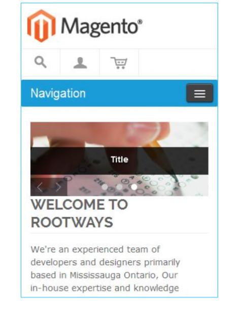 Mobile view slideshow image